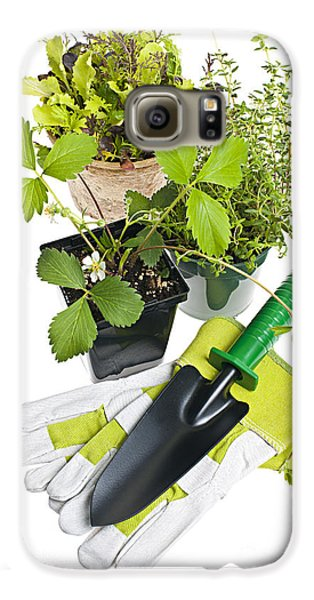 Gardening Tools And Plants Galaxy S6 Case by Elena Elisseeva