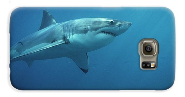 Great White Shark Carcharodon Galaxy S6 Case by Mike Parry