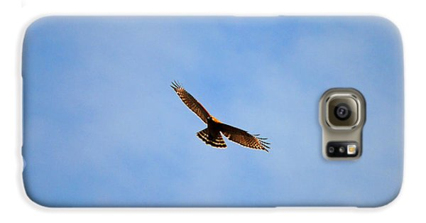 Red Shouldered Hawk In Flight Galaxy Case by Jai Johnson