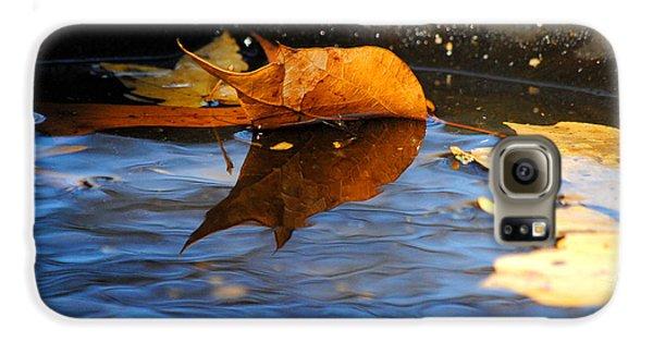 Autumn's Reflection Galaxy Case by Jai Johnson