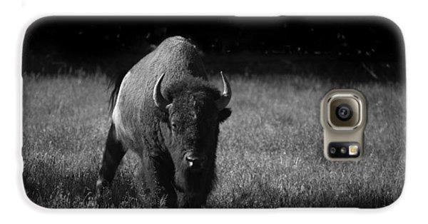 Bison Samsung Galaxy Case by Ralf Kaiser