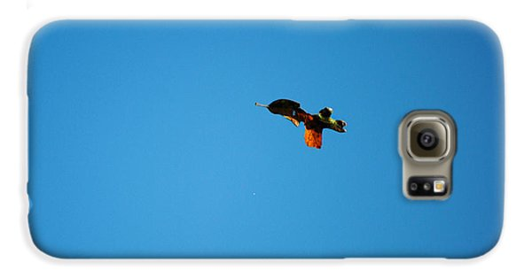 Falling Leaf Samsung Galaxy Case by Jai Johnson