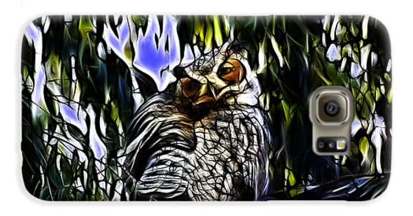 Great Horned Owl - 4228 - Fractal - S Samsung Galaxy Case by James Ahn