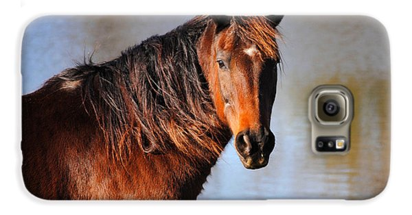 Horse By The Water Galaxy Case by Jai Johnson