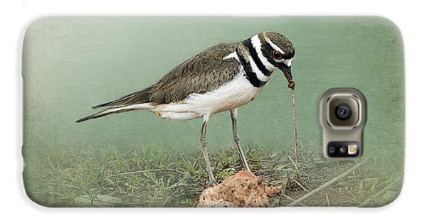 Killdeer And Worm Galaxy S6 Case by Betty LaRue