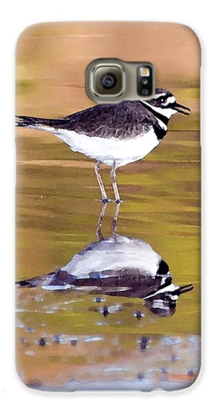 Killdeer Reflection Galaxy S6 Case by Betty LaRue
