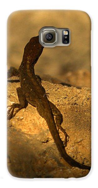 Leapin' Lizards Galaxy S6 Case by Trish Tritz