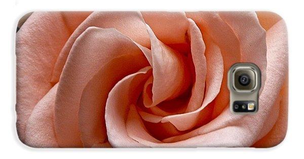 Peach-colored Rose Samsung Galaxy Case by Sean Griffin