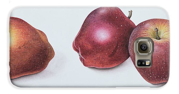 Red Apples Galaxy S6 Case by Margaret Ann Eden
