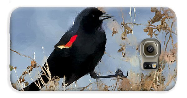Redwing Blackbird Galaxy S6 Case by Betty LaRue
