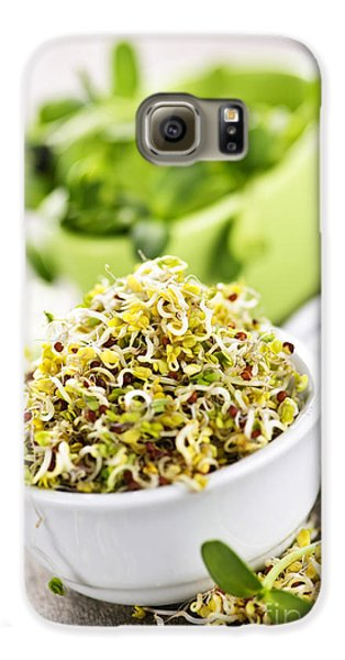 Sprouts In Cups Galaxy S6 Case by Elena Elisseeva