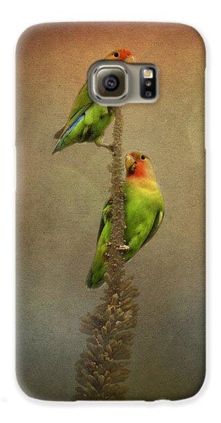 Up And Away We Go Galaxy S6 Case by Saija  Lehtonen