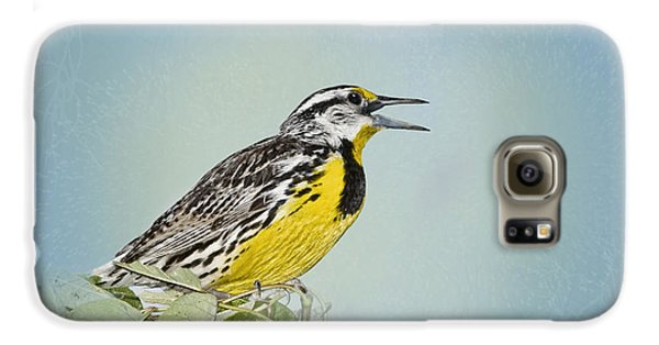 Western Meadowlark Galaxy S6 Case by Betty LaRue