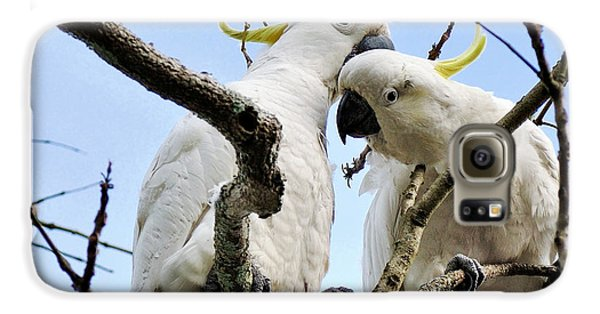 White Cockatoos Galaxy S6 Case by Kaye Menner