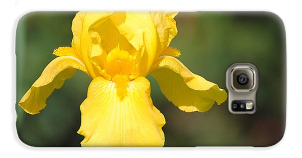 Yellow Iris Galaxy Case by Jai Johnson