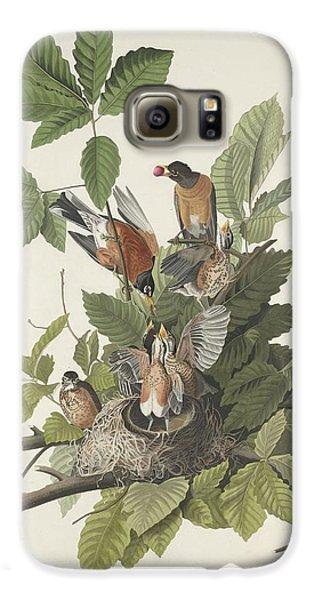 American Robin Galaxy S6 Case by John James Audubon