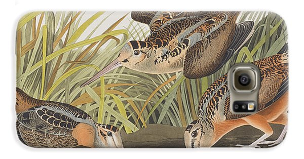 American Woodcock Galaxy S6 Case by John James Audubon