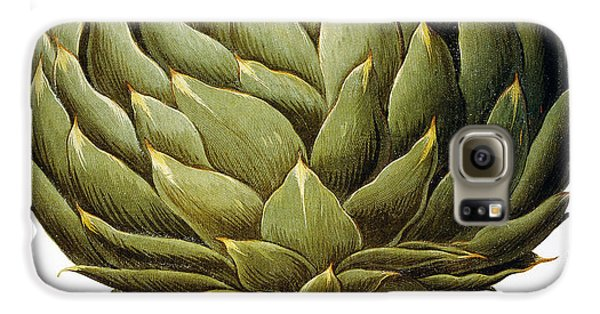 Artichoke, 1613 Galaxy S6 Case by Granger