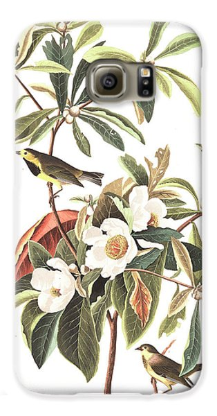 Bachman's Warbler  Galaxy S6 Case by John James Audubon