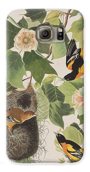 Baltimore Oriole Galaxy S6 Case by John James Audubon