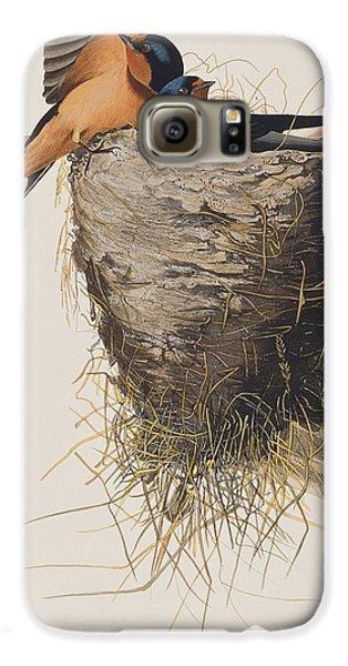 Barn Swallow Galaxy S6 Case by John James Audubon