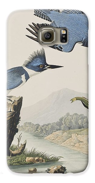 Belted Kingfisher Galaxy S6 Case by John James Audubon