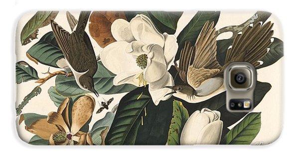 Black-billed Cuckoo Galaxy S6 Case by John James Audubon