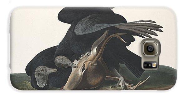 Black Vulture Galaxy S6 Case by John James Audubon