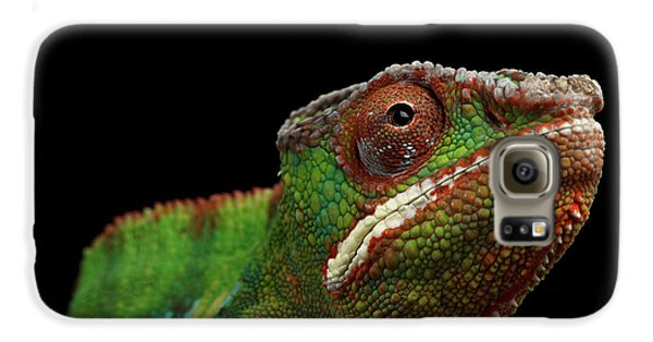 Closeup Head Of Panther Chameleon, Reptile In Profile View Isolated On Black Background Galaxy S6 Case by Sergey Taran