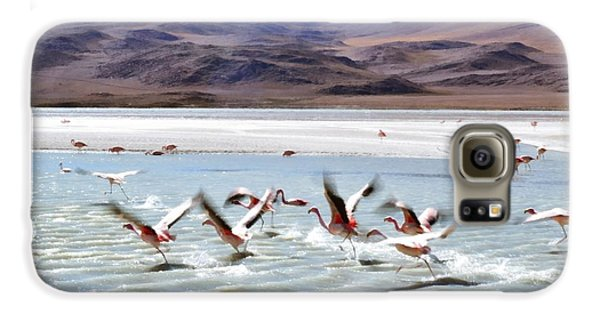 Flying Flamingos Galaxy S6 Case by Sandy Taylor