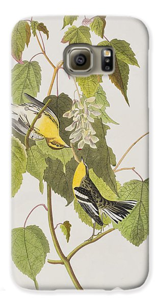 Hemlock Warbler Galaxy S6 Case by John James Audubon
