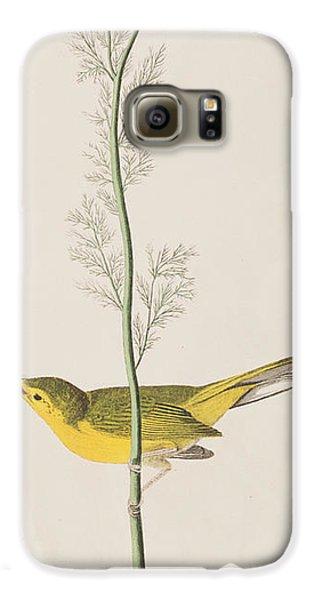 Hooded Warbler Galaxy S6 Case by John James Audubon