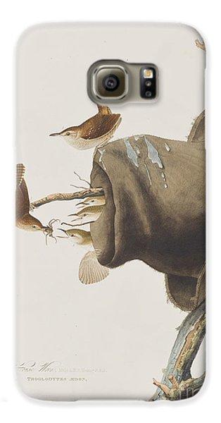 House Wren Galaxy S6 Case by John James Audubon