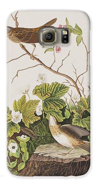 Lincoln Finch Galaxy S6 Case by John James Audubon