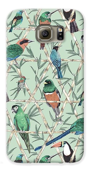 Menagerie Galaxy S6 Case by Jacqueline Colley