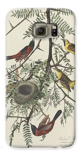 Orchard Oriole Galaxy S6 Case by John James Audubon