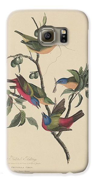 Painted Bunting Galaxy S6 Case by John James Audubon