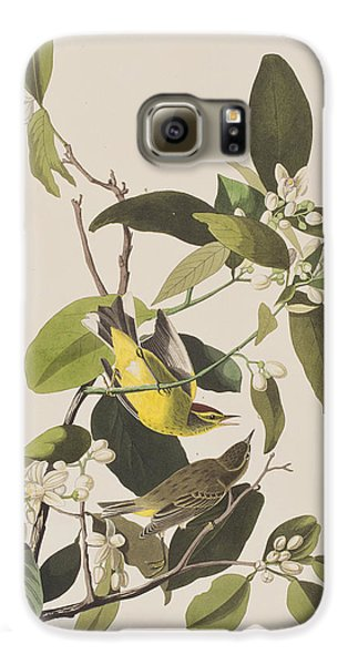 Palm Warbler Galaxy S6 Case by John James Audubon