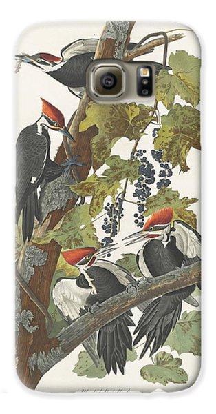 Pileated Woodpecker Galaxy S6 Case by John James Audubon
