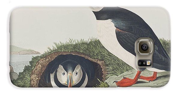 Puffin Galaxy S6 Case by John James Audubon