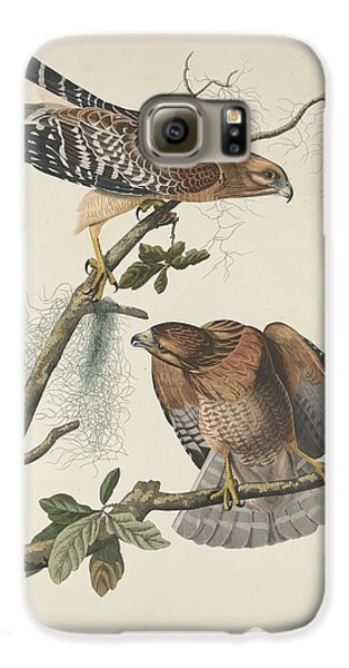 Red Shouldered Hawk Galaxy S6 Case by John James Audubon