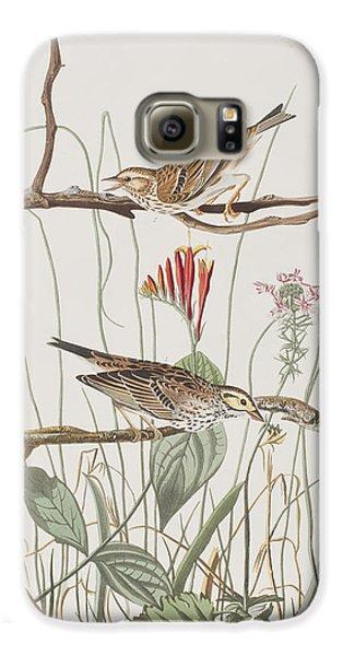 Savannah Finch Galaxy S6 Case by John James Audubon