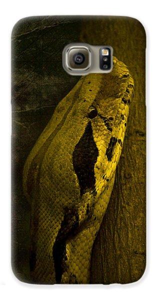 Snake Galaxy S6 Case by Svetlana Sewell