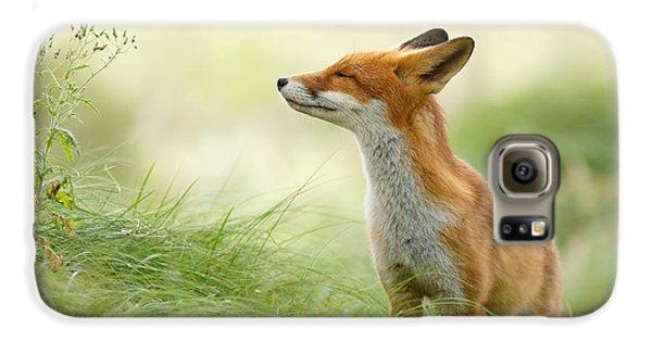 Zen Fox Series - Zen Fox Galaxy S6 Case by Roeselien Raimond