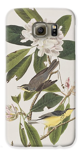 Canada Warbler Galaxy S6 Case by John James Audubon