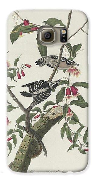 Downy Woodpecker Galaxy S6 Case by John James Audubon