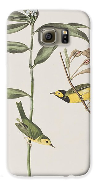 Hooded Warbler  Galaxy S6 Case by John James Audubon
