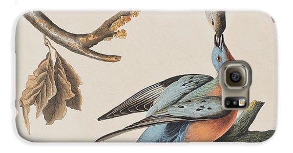 Passenger Pigeon Galaxy S6 Case by John James Audubon