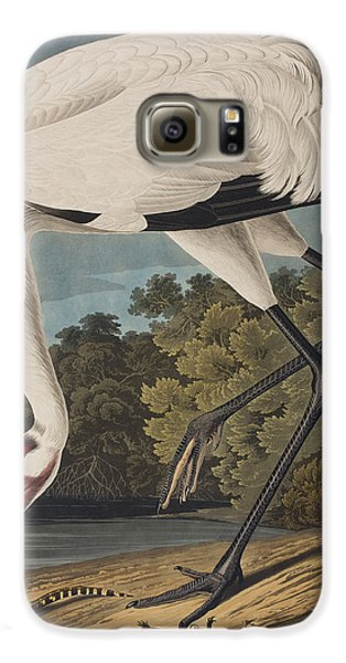 Whooping Crane Galaxy S6 Case by John James Audubon