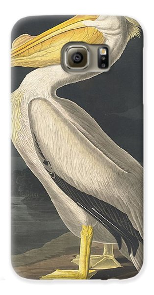 American White Pelican Galaxy S6 Case by John James Audubon